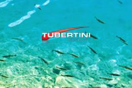 Desktop Tubertini Fish